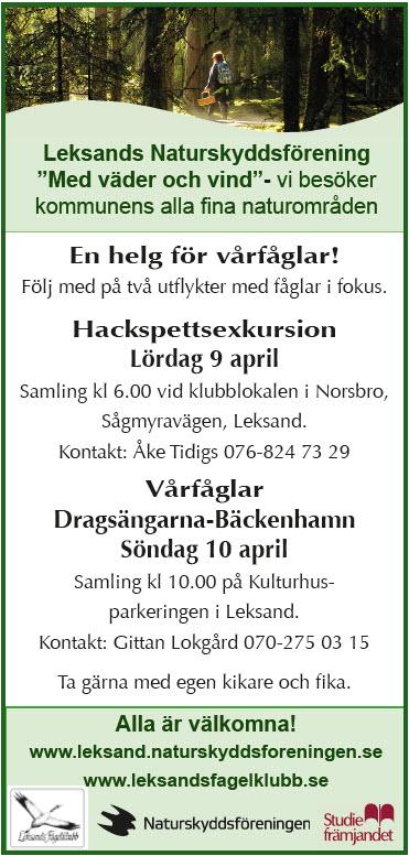 Fågelutflykter 9-10 april